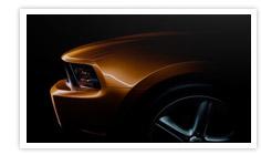 Mustang - 2010