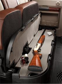 Cabela Gun Case